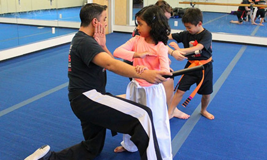 Gymnastics and Various Martial Arts Styles Come Together at Gymrate