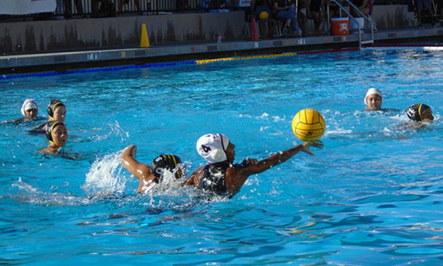Cruising in the Pool: Wilcox Water Polo Wins Big