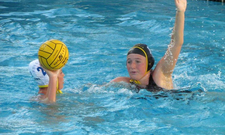 Bruins & Wilcox Rival Water Polo