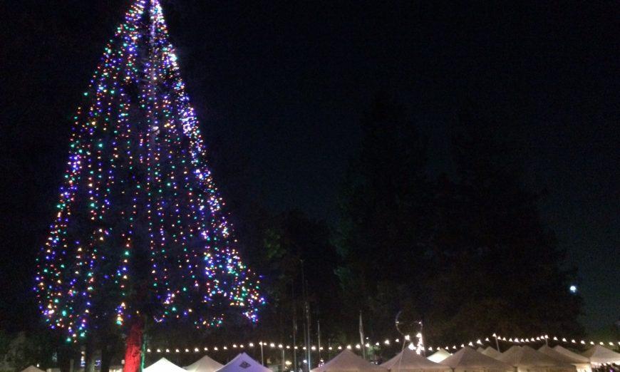 Santa Clarans Kick Off Holiday Season with Annual Tree Lighting
