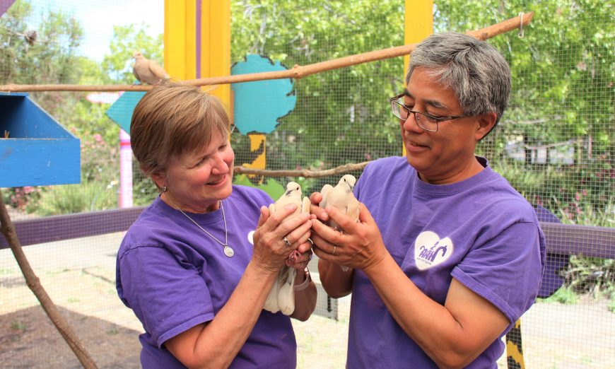 Animal Assisted Happiness Smile Farm youth with needs
