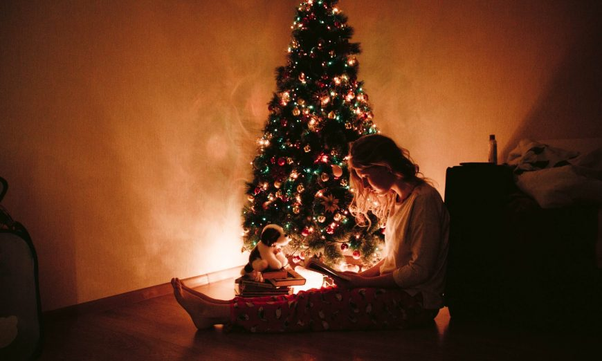 If you're wishing for a Literary Christmas, our Associate Editor, Carolyn, has some ideas for a Christmas story or two to add to your collection.