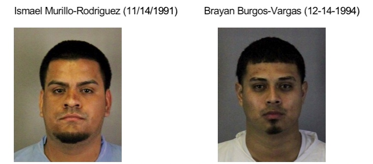 Ismael Murillo-Rodriguez and Brayan Burgos-Vargas have been arrested in connection to an auto burglary spree that included cars in Sunnyvale.