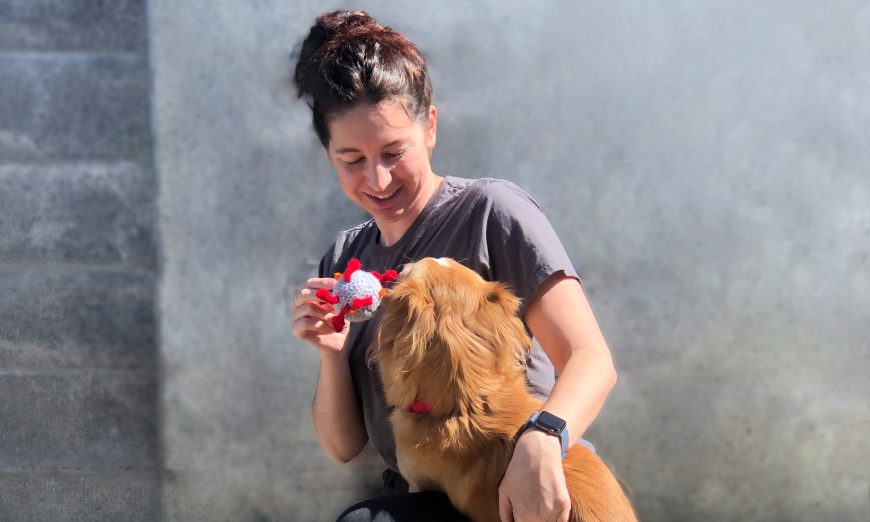 Humane Society Silicon Valley in Milpitas is now offering online adoptions to help people find new furry friends. Adoptions continue through COVID-19.
