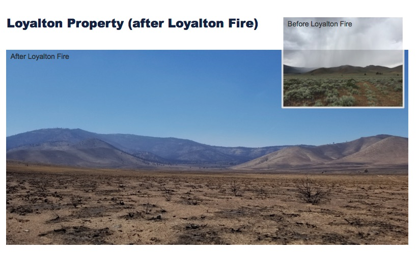 Santa Clara Mayor Lisa Gillmor had resisted selling an unprofitable asset which is a piece of land near Loyalton.