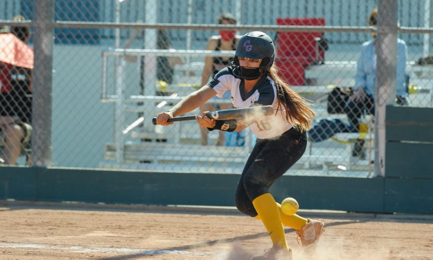 The Wilcox softball team got their first win when they took on the Fremont Firebirds of Sunnyvale. Amanda McDowell had a great game.